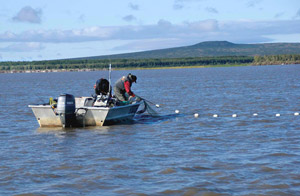 fishing on the Yukon River Emmonak